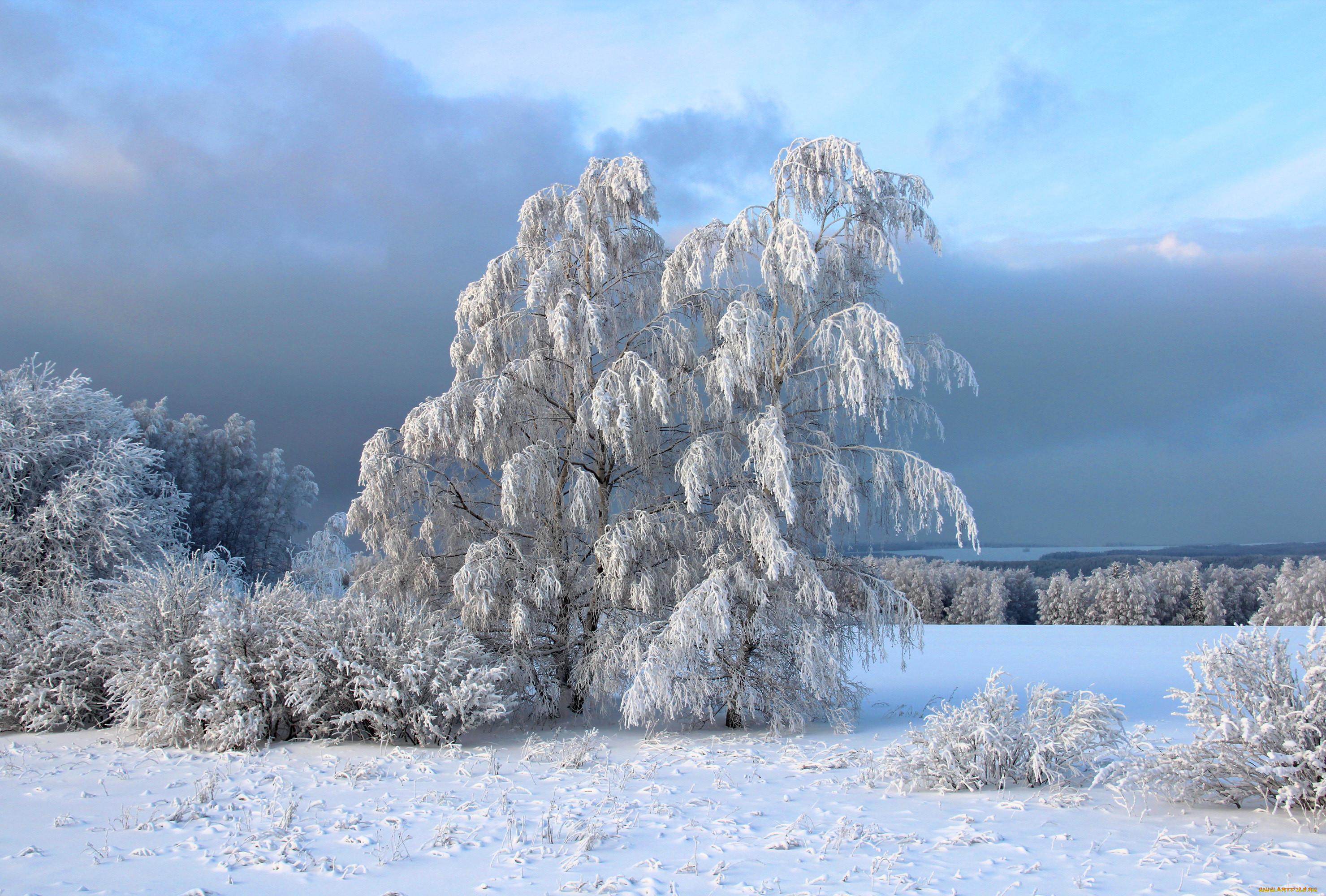 нашем пейзаж картинки природа зима называются картинки